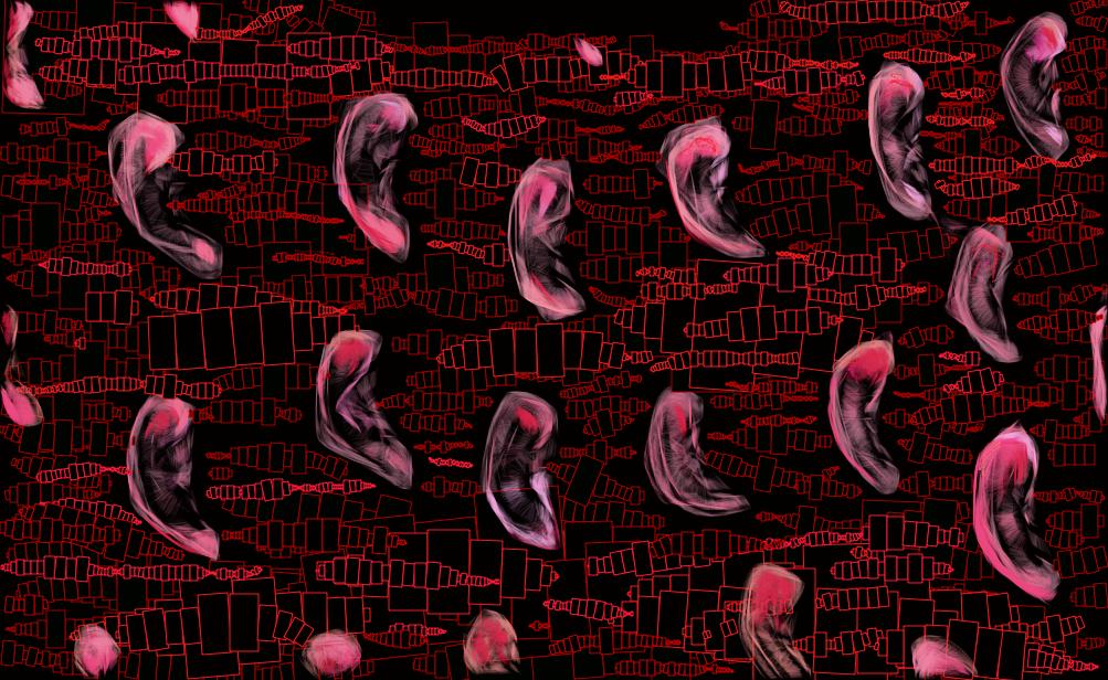 murs-oreilles-5612812